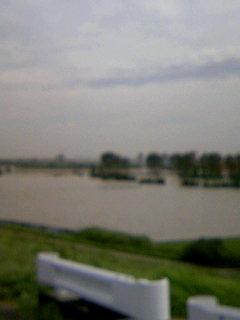 現在の荒川