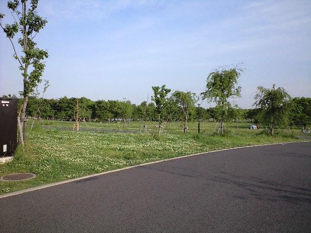 舎人公園へサイクリング