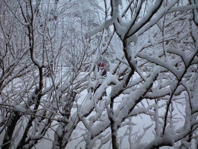 雪の御殿場
